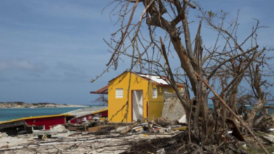 Photo of Sint Maarten Continues to Struggle Five Weeks After Irma, Still No Request For Dutch Assistance