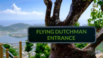 Photo of Watch: Incredible Video Takes You on a Ride of Rainforest Adventures Flying Dutchman