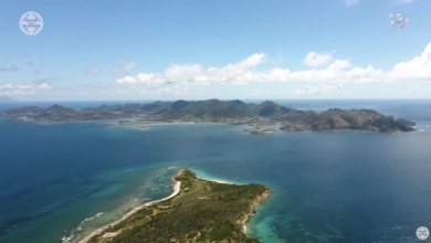 Photo of Watch: Beautiful Short Documentary Will Make You Feel Like You're on Saint Martin (or Wish You Were)